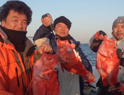 深海500mからの赤魚鯛!